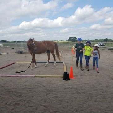What do you learn while working with horses. Objectives of Leadership and Life Skills Programs.