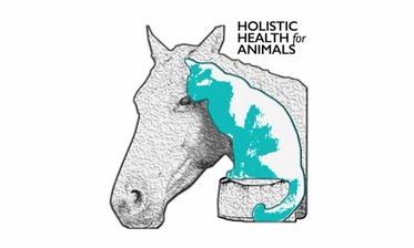 Holistic Health  4 Animals