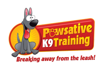 Pawsative K9 Training