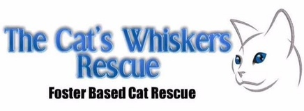 The Cats Whiskers Rescue