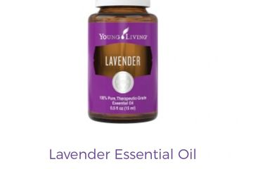 YL Lavender Essential Oil $35
