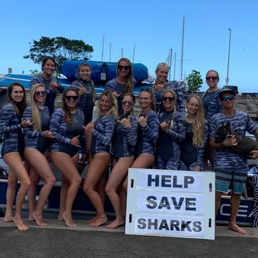 Our shark conservation team at One Ocean Diving in the Xcel tiger shark conservation wetsuits. Raw Elements Reef Safe Sunscreen. Help Save Sharks. Shark Conservation. Girls in Shark Wetsuits. Shark Bikini's. WOmen in Sharks