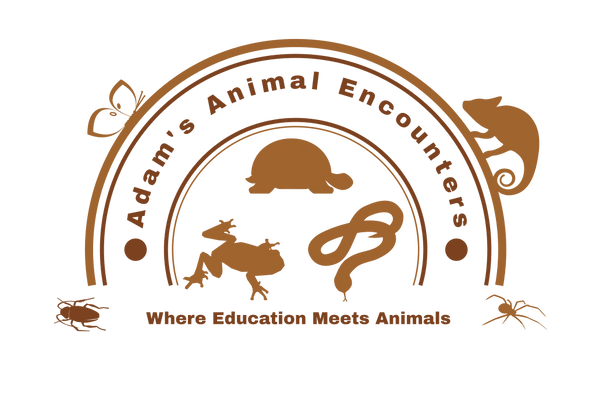 Adams Animal Encounters