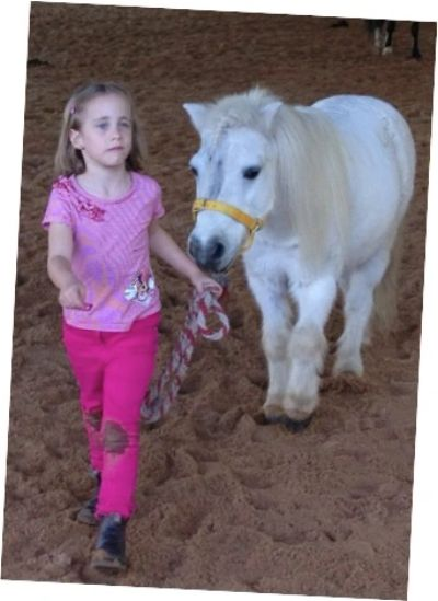 child mental health treatment is more engaging with horses