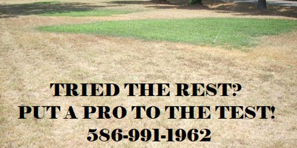 sprinkler repair, sprinkler system installation, Creative Pros LLC, handyman, outdoor lighting