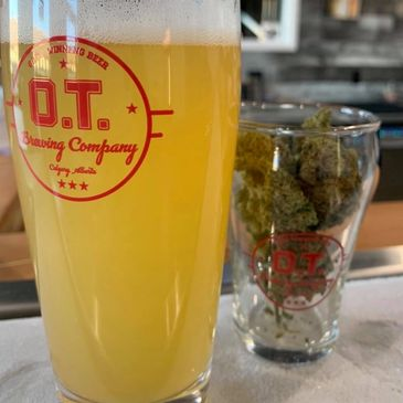 cannabis and beer pairing, cannabis sommelier, OT brewing, cannabis beer, andrew freedman