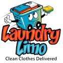 "Laundry Limo - ""We Do Your Laundry"""