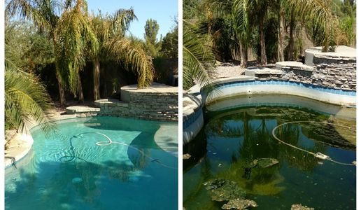 Pool was shut down for 4 months.  A little hard work and looks as good as new!