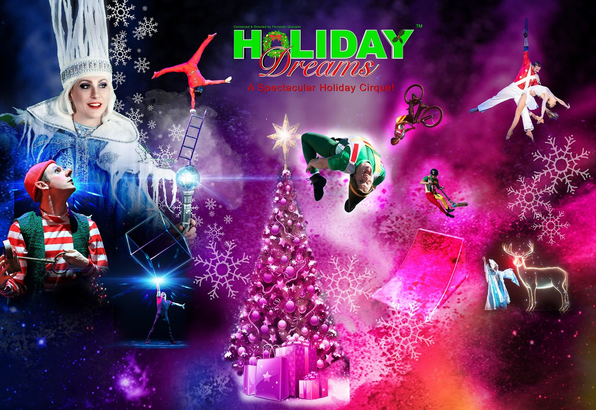Holiday Dreams Cirque Show.Bbest holiday show featuring holograms, projection mapping and lasers!