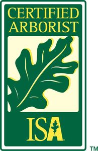 ISA Certified Arborists on staff Tim Shultz IN-3583A