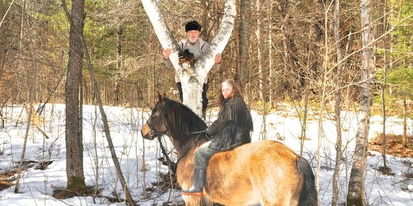 We ride bareback on horses looking for Chaga in the Canadian North and only harvest the live best.