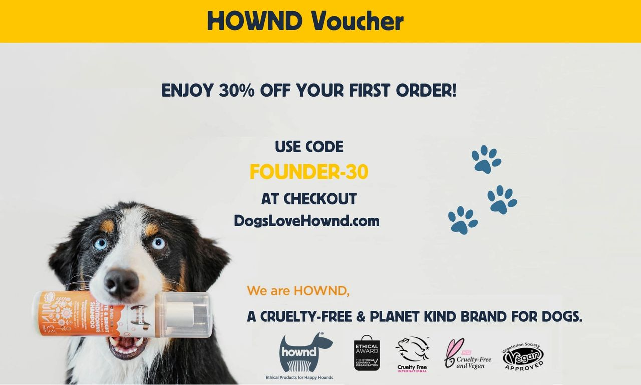 Voucher for TSF readers: FOUNDERS-30  (30% discount at DogsLoveHownd.com ) See T&Cs below..