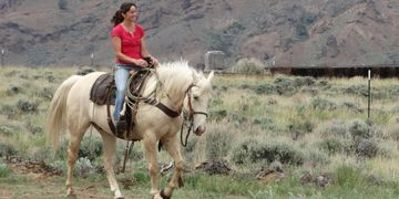 Learn horsemanship to keep riding fun and safe