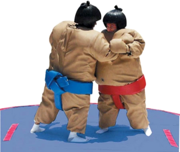 Sumo suits rentals great for after promos rent near Virginia rent near North Carolina  Roanoke