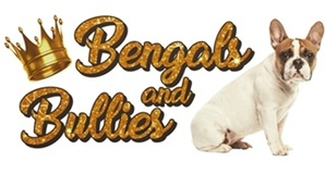 Bengals and Bullies