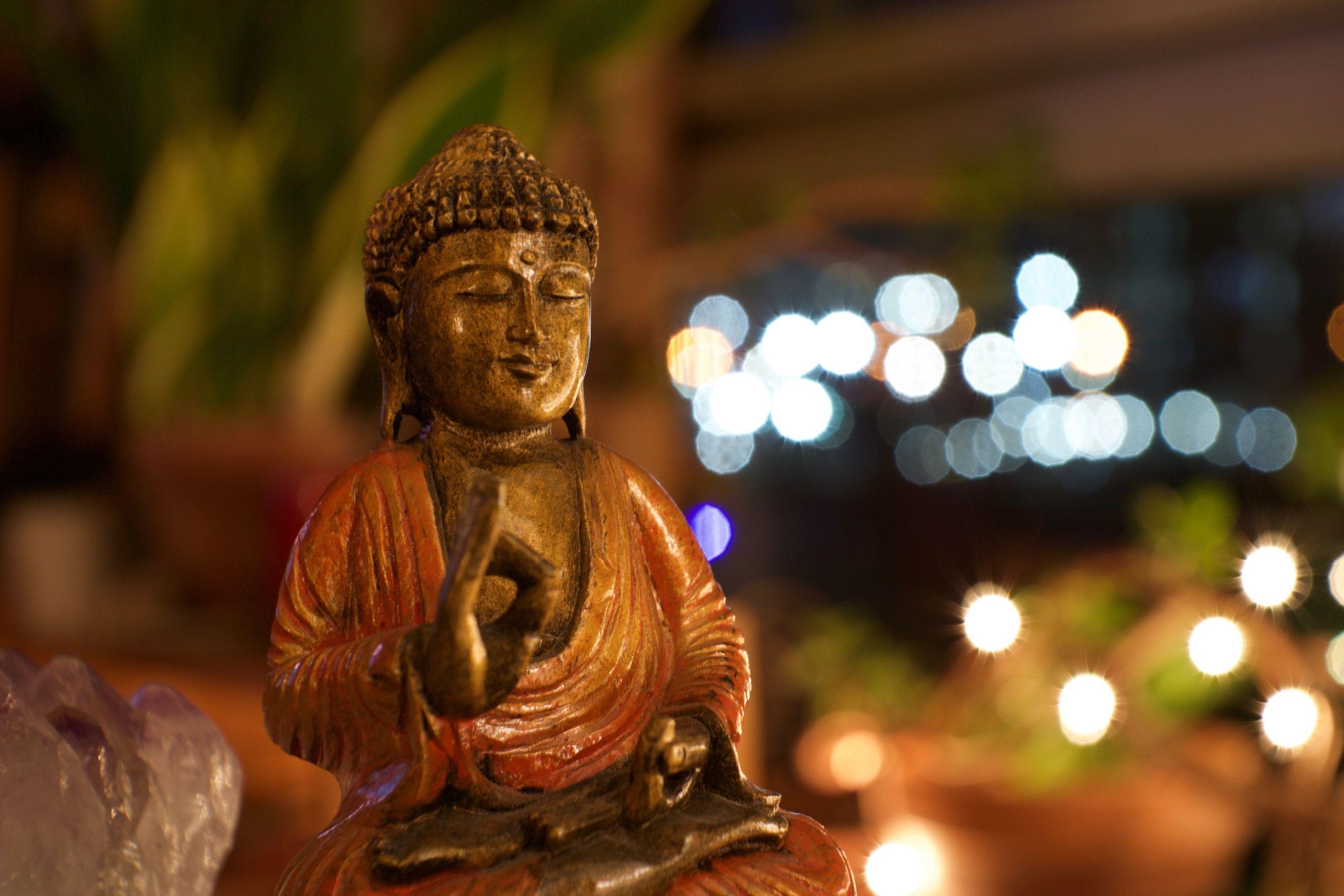 Spira Yoga Shala | Spira Yoga Shala