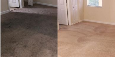 Aomega Cleaning, Carpet Cleaning Miami