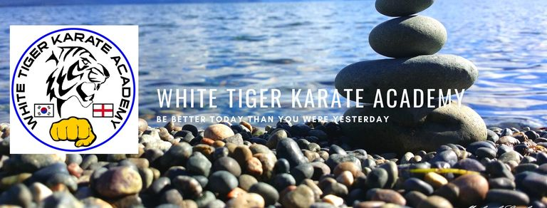 white tiger karate .martial arts for adults and children