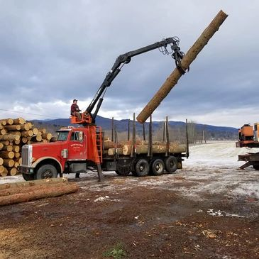 Marc Fontaine loading pine & hemlock logs
