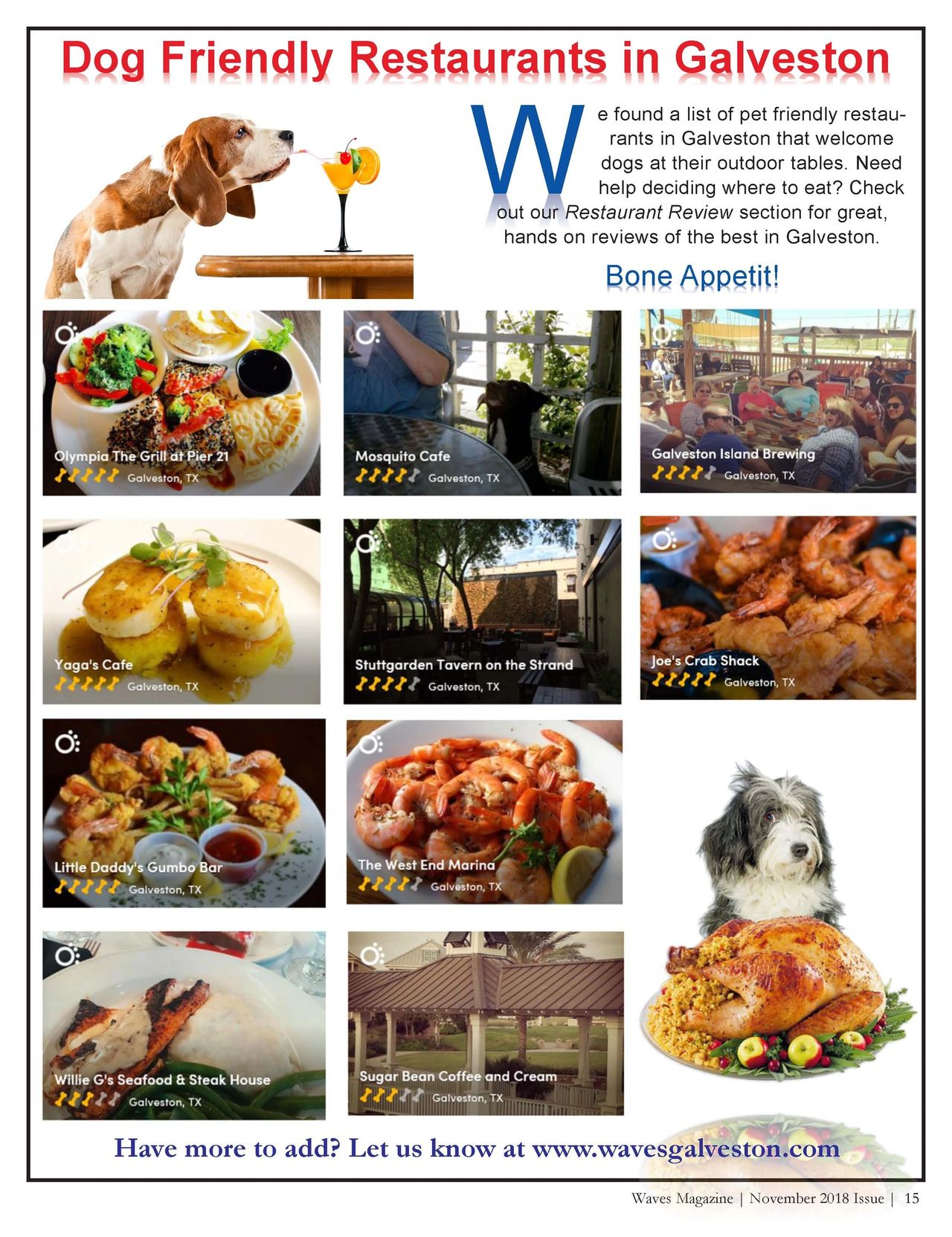 Dog Friendly Restaurants in Galveston | By: Waves Galveston