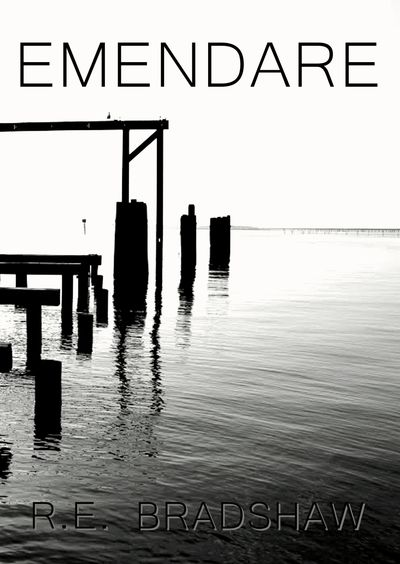 Click on the book cover above to read Chapter 2 of EMENDARE.