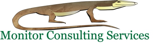 Monitor Consulting Services Pty Ltd