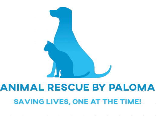 Animal Rescue By Paloma