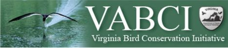 Virginian Bird Conservation Initiative