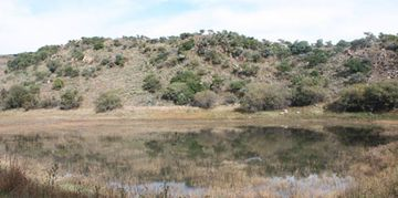 Natural dam located on the majestic magalies retreat