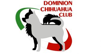 Click here to visit the Dominion Chihuahua Club Website!