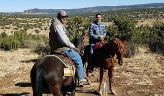 horse back hunting guides arizona outfitters horses backpack trips