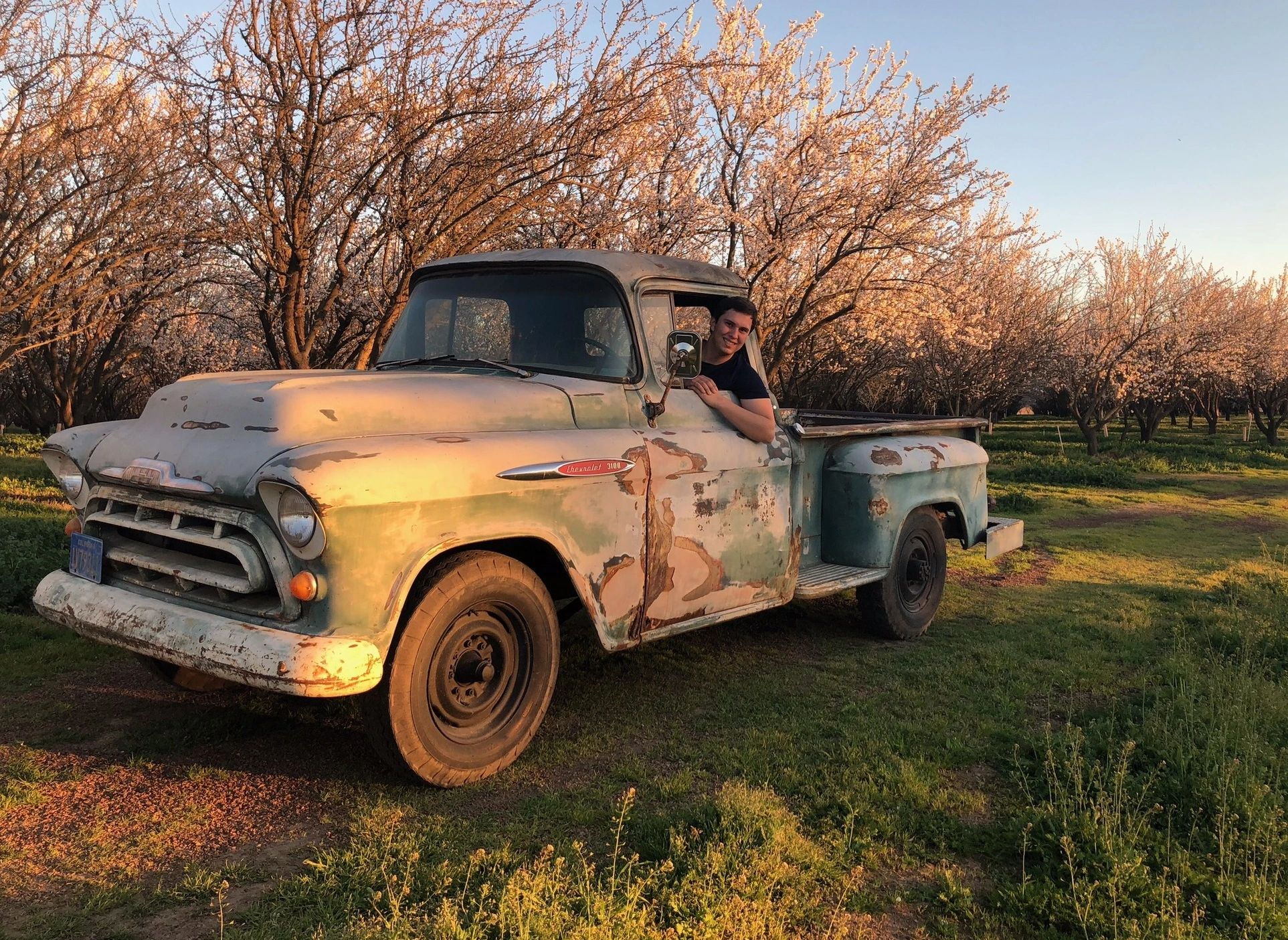 Young co-owner Jimmy Bremner smiles from his 1957 Chevy surrounded by our blossoming almond orchard.