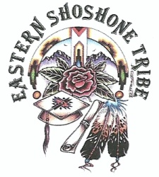 Eastern Shoshone Education