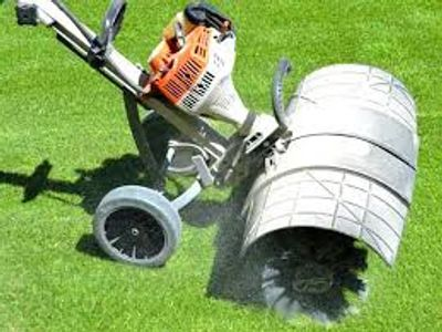 stihl mm55 power brush for artifical grass