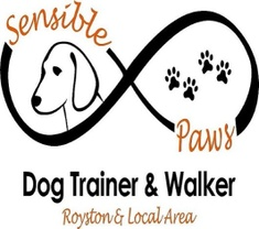 Sensible Paws Dog Training / Walking