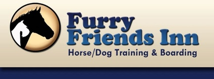 Furry Friends Inn & Dog Day Care