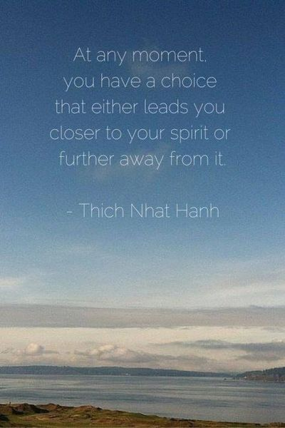 Thich Nhat Hanh, Wake Up, SF, Plum Village, Sangha, Wake UP SF, Bay Area, Mindfulness, Zen, Mindful