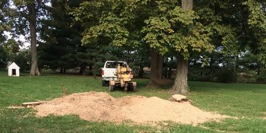 Stump Removal - Crawfordsville, IN