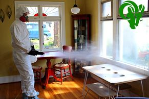 Man spraying disinfectant fogger