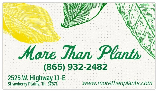 More Than Plants