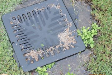 Sewer and storm water, plumber