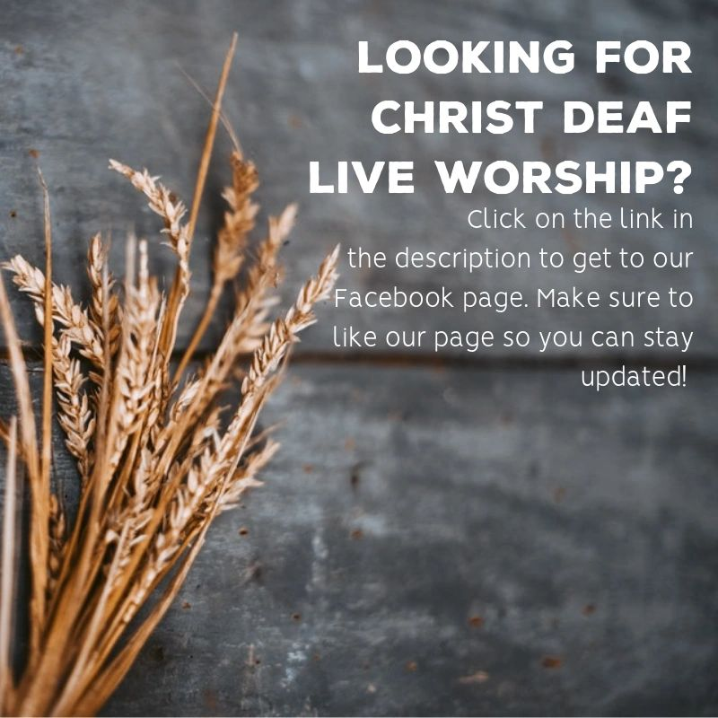 Join us for online worship by clicking the Facebook icon below!