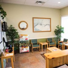 Dr. Scot Chiropractic reception area