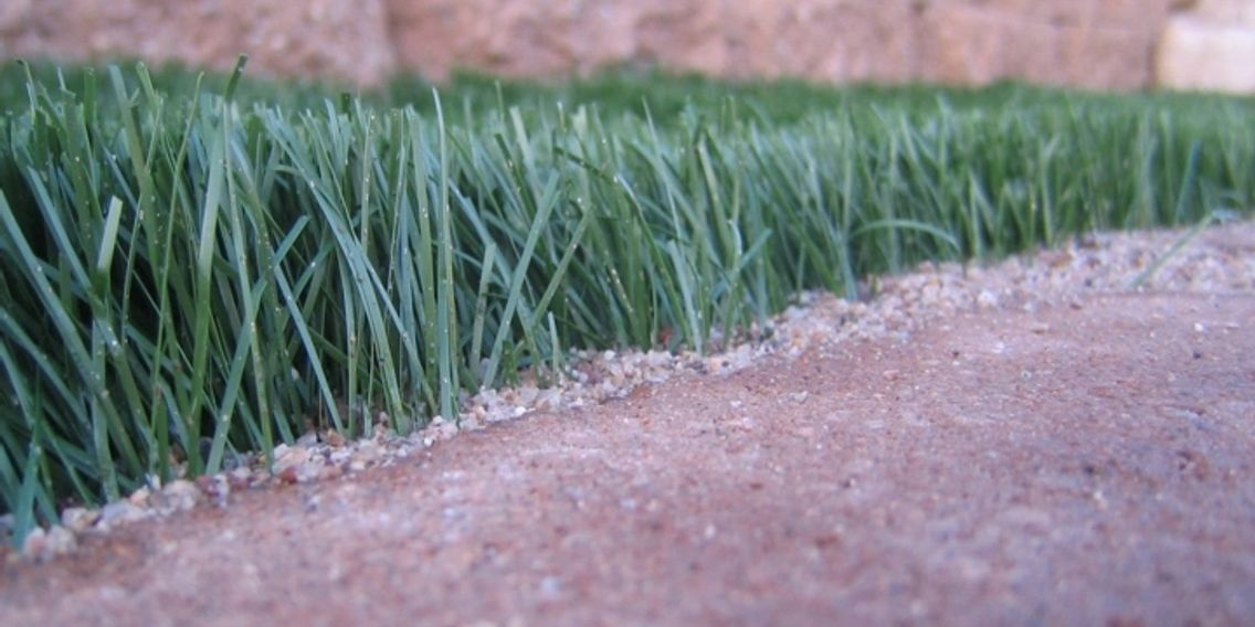 Artificial Turf, Artificial Grass, Synthetic Grass, Synthetic Turf. Astro Turf, fake grass,