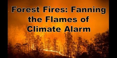 Forest fires are fanning the flames of climate alarm