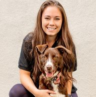 Maddie in dog daycare and dog boarding at Tempe Dogs in Tempe Arizona.