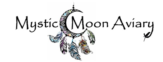 Mystic Moon Aviary