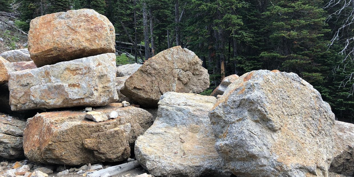 These landscaping rocks are impressive statement pieces suitable for outside decor at home & work.