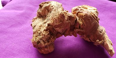 MANDRAKE OFFICINARUM  MANDRAKE ROOT WHOLE PIECES FOR SALE AND AVAILABLE HIGHWINDS HERBS