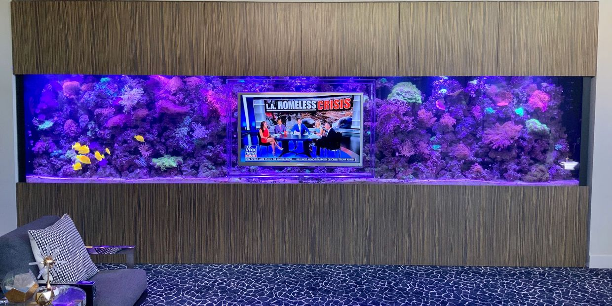 Custom Aquarium Installation, Fish Tank Servicing, Professional Aquarium Maintenance, Aquarium Design